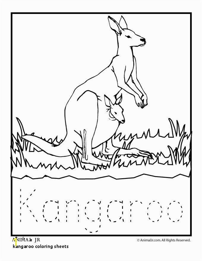 Kangaroo Coloring Page Kangaroo Coloring Page Inspirational Coloring