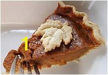 A slice of home made pumpkin pie