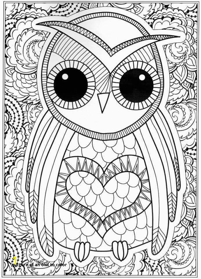 Picture An Owl to Color Free Owl Coloring Pages Coloring Pages Line New Line Coloring 0d