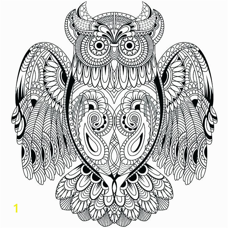 Coloring Pages Owls Printable Owl Coloring Pages Lovely Cool Coloring Page Unique Witch
