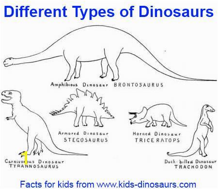Dinosaur Types