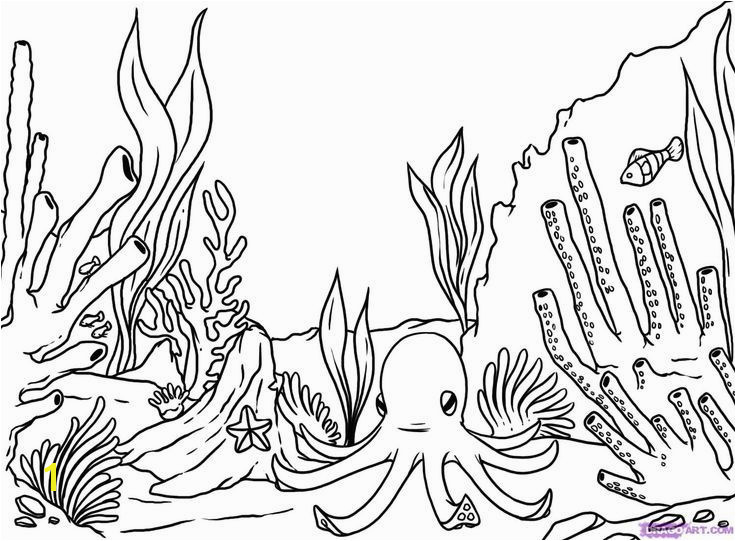 Coral Coloring Pages Inspirational How to Draw A Coral Reef Step 8 Drawing Pinterest 10