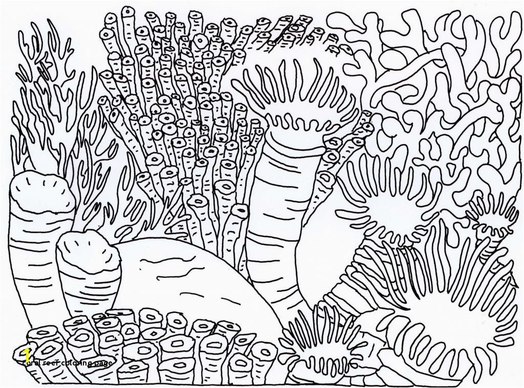 Coral Reef Coloring Page Proven Coloring Pages Coral Reefs Reef Page 5763 Unknown Ruva