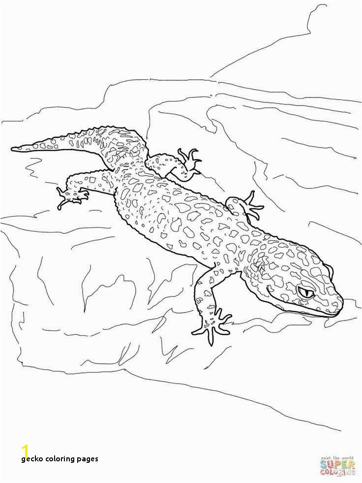 Gecko Coloring Pages Lovely Animal Coloring Sheets