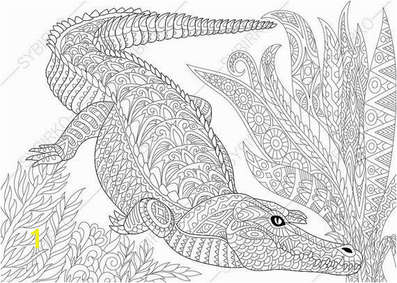 Crocodile Alligator Coloring Page Adult by ColoringPageExpress