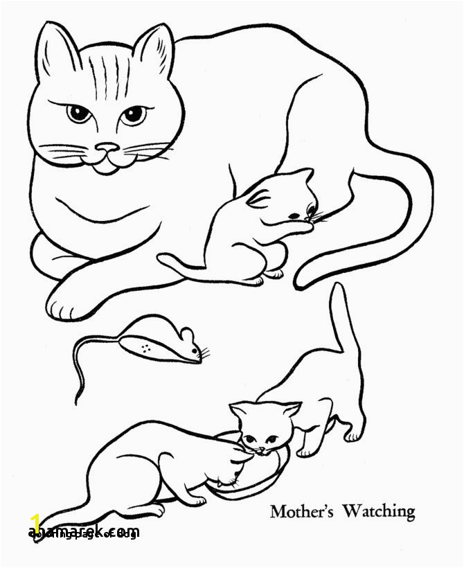 Cute Kitty Cat Coloring Pages Coloring Page Dog Dog and Cat Coloring Pages Luxury Best Od Dog