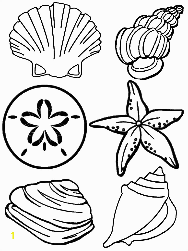 Free Printable Seashell Coloring Pages For KidsBest Coloring Pages