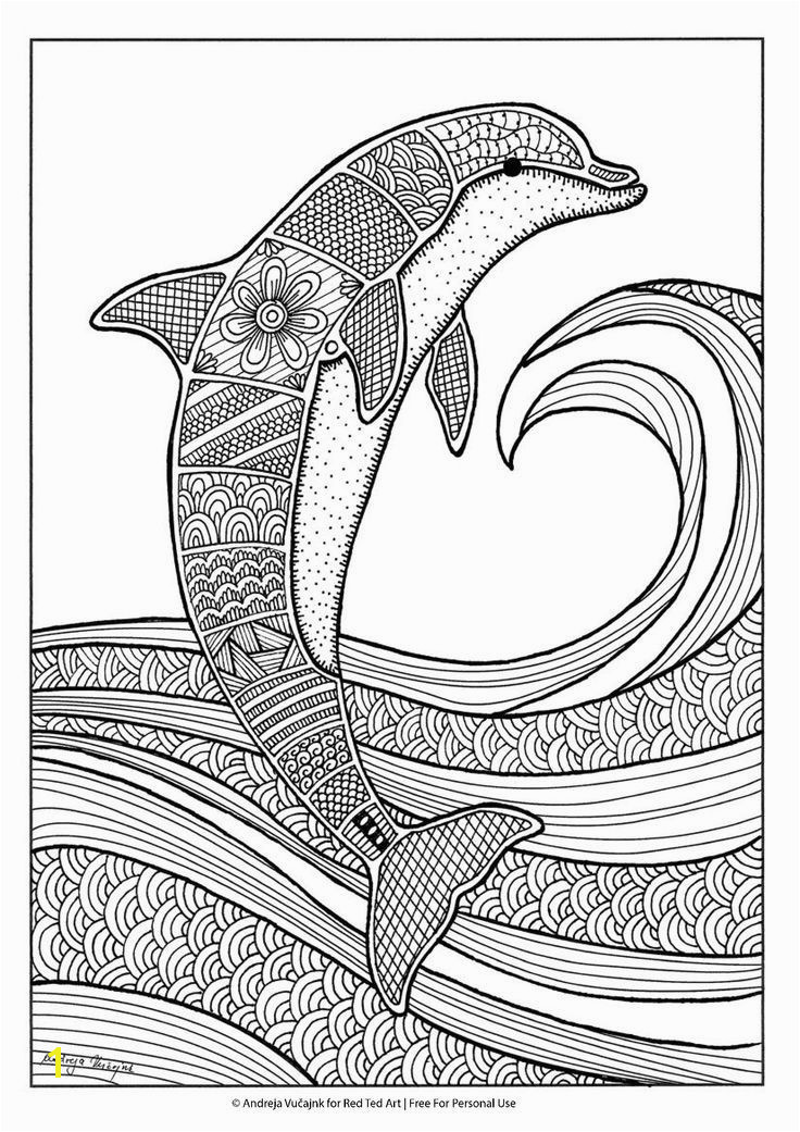 Free dolphin colouring page for grown ups nyyoung