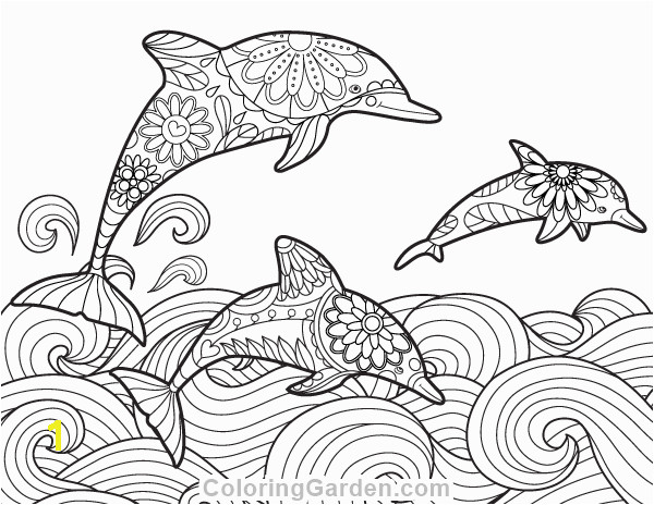 Free printable dolphin adult coloring page Download it in PDF format at
