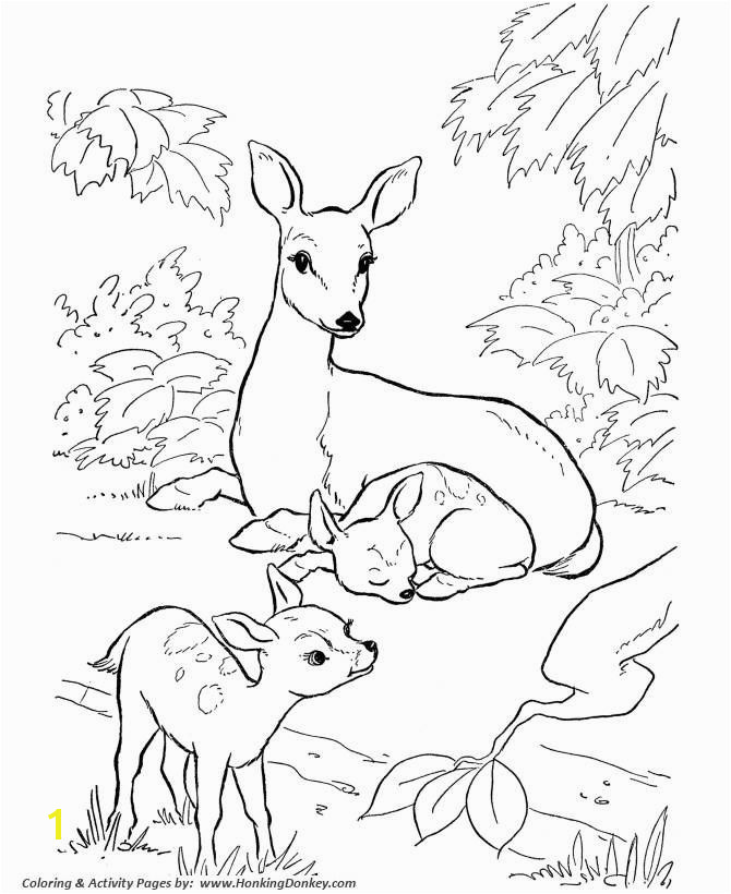 Donkey Coloring Page Fresh Deer Coloring Page Doe and Fawn Coloring Page Deer Inspiration Donkey