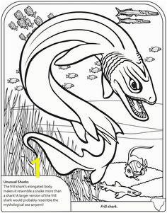 Dover Sampler Sharks Coloring Book Kinderen Kleuren Boek Bladzijden Kleuren Kleurplaten