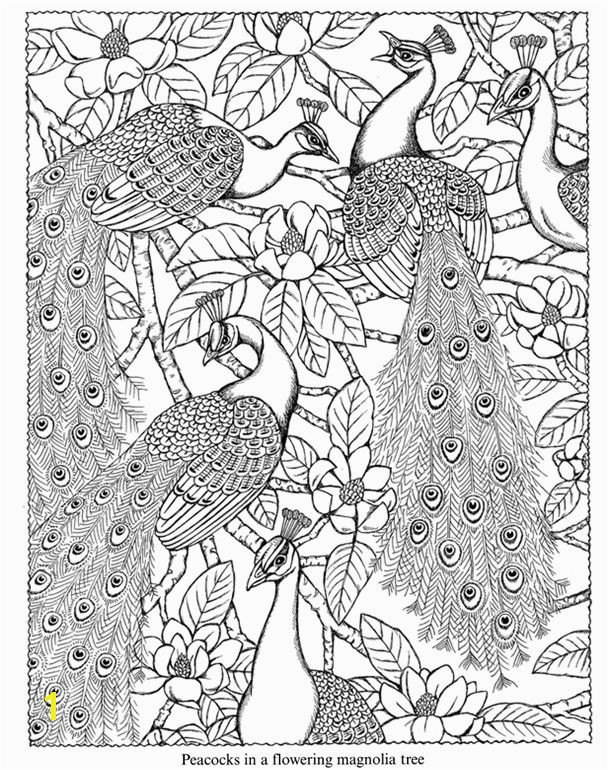 Nature Scapes coloring book sample Dover