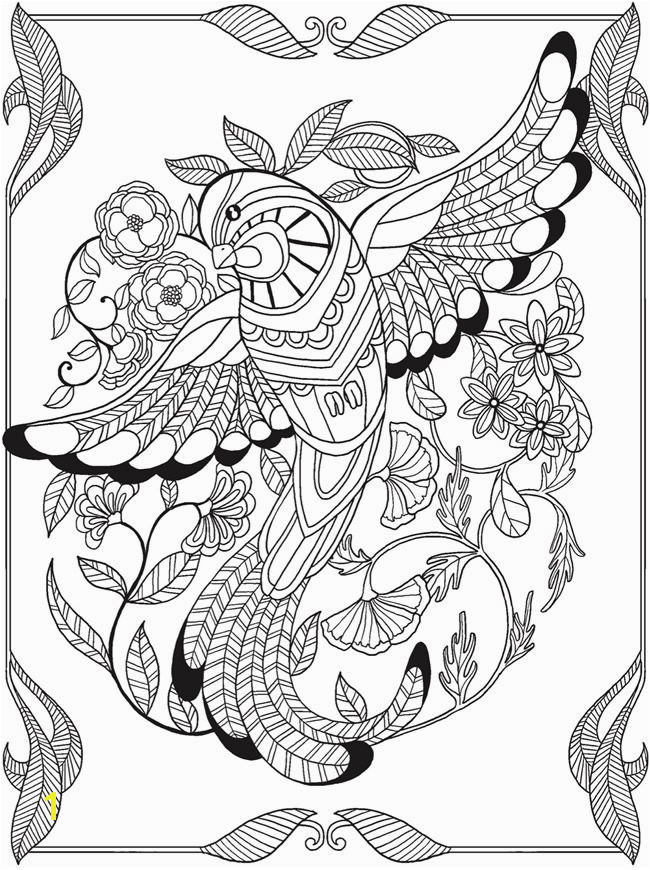 Wel e to Dover Publications free coloring book sample page Birds of Paradise 3