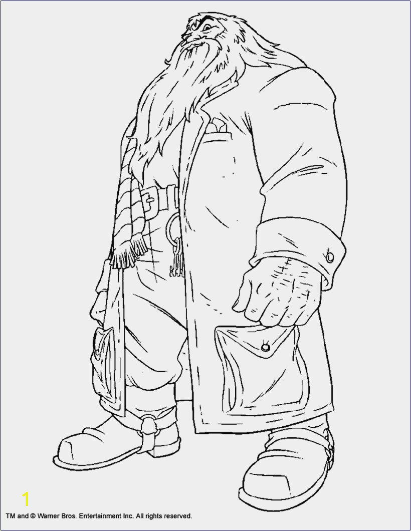 Harry Potter Coloring Pages Hogwarts New Harry Potter Colouring