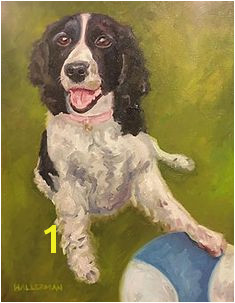 English Springer Spaniel Coloring Pages 138 Best English Springer Spaniel Clipart Images On Pinterest