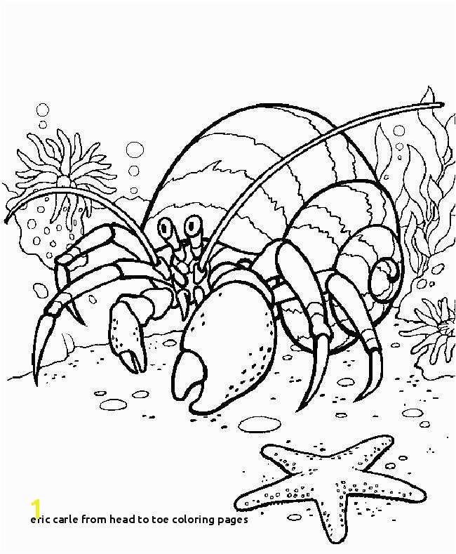 Eric Carle From Head to toe Coloring Pages Eric Carle From Head to toe Coloring Pages 28 Eric Carle Coloring