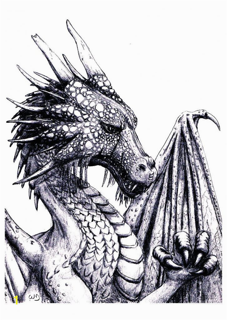 Security Evil Dragon Coloring Pages For Adults Free Page Adult An Impressive To