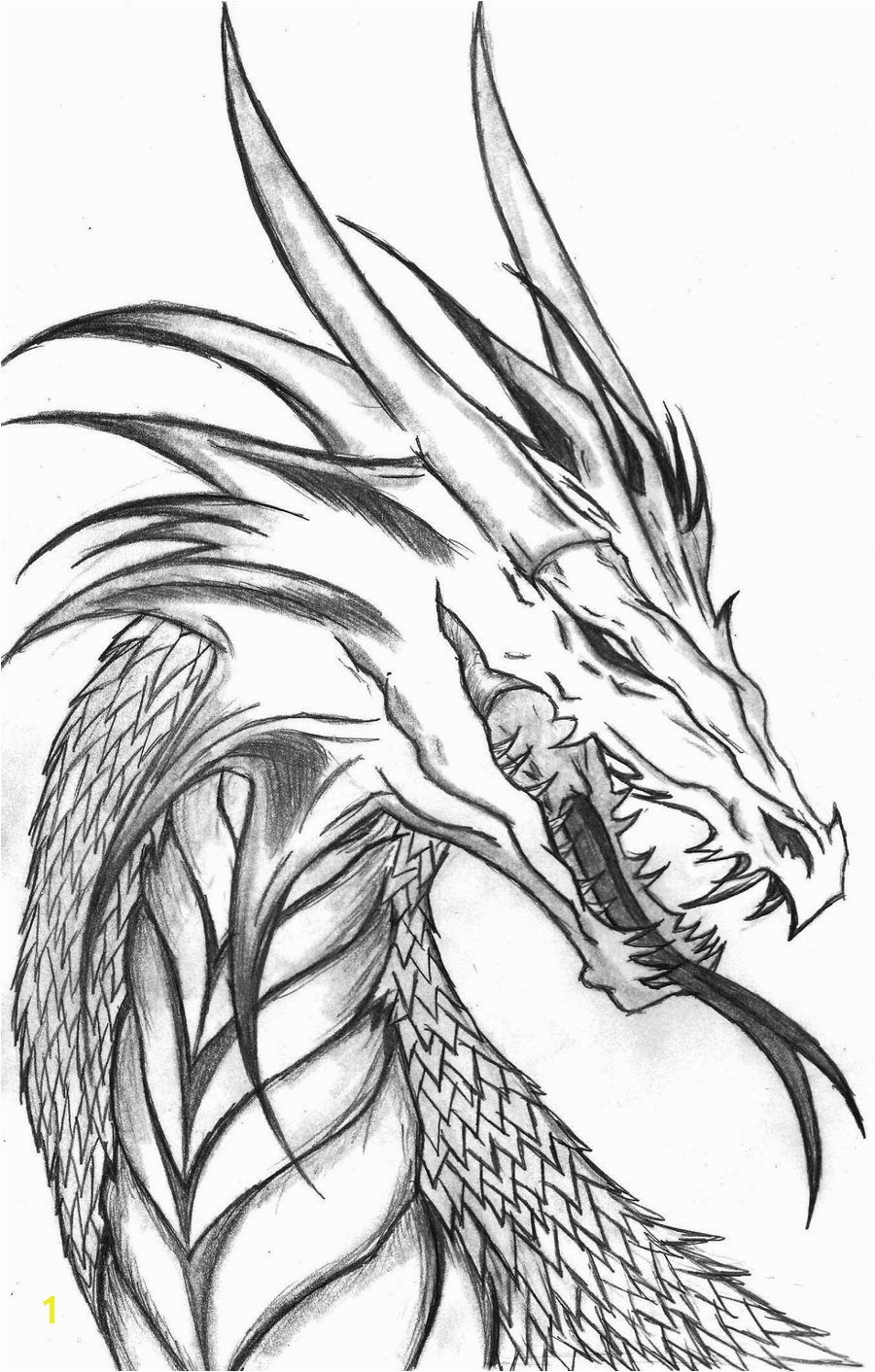 Informative Evil Dragon Coloring Pages For Adults Free Printable Kids