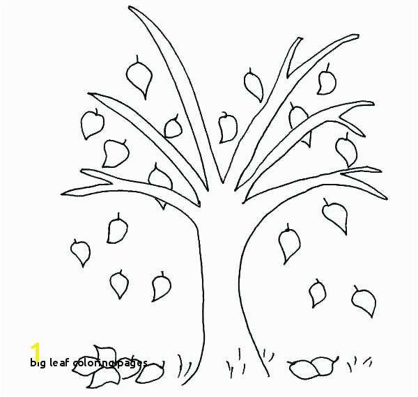 Big Leaf Coloring Pages Leaf Coloring Pages for Preschool Autumn Coloring Pages Beech Tree
