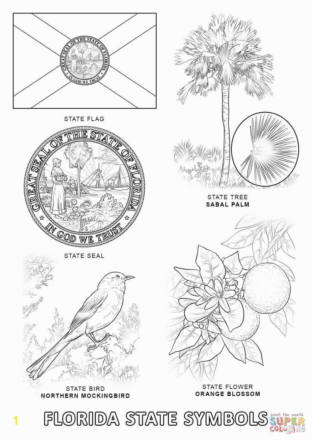 Florida State Symbols coloring page from Florida category Select from printable crafts of cartoons nature animals Bible and many more