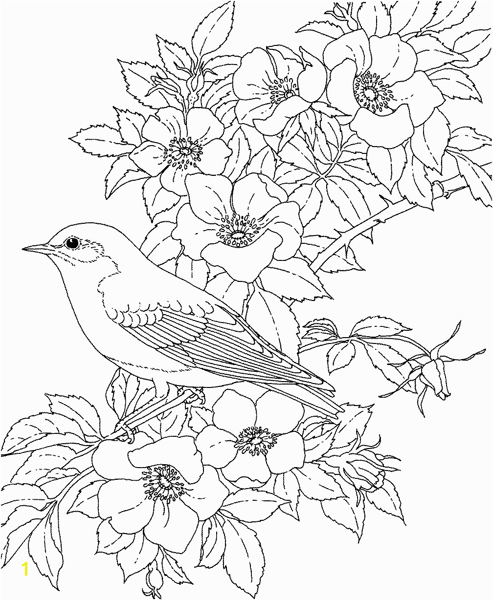Adult coloring pages flowers to and print for free