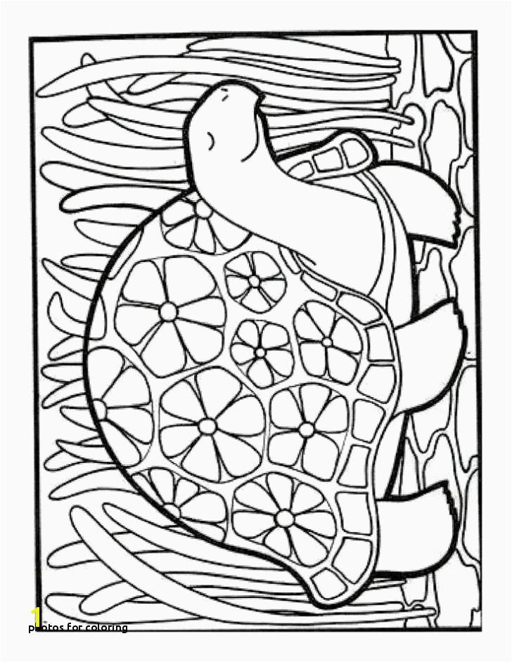 Free Disney Printables Coloring Pages 15 Elegant Disney Printable Coloring Pages
