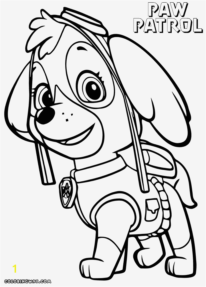 Paw Patrol Skye Collectie 20 Beautiful Marshall Paw Patrol Coloring Page