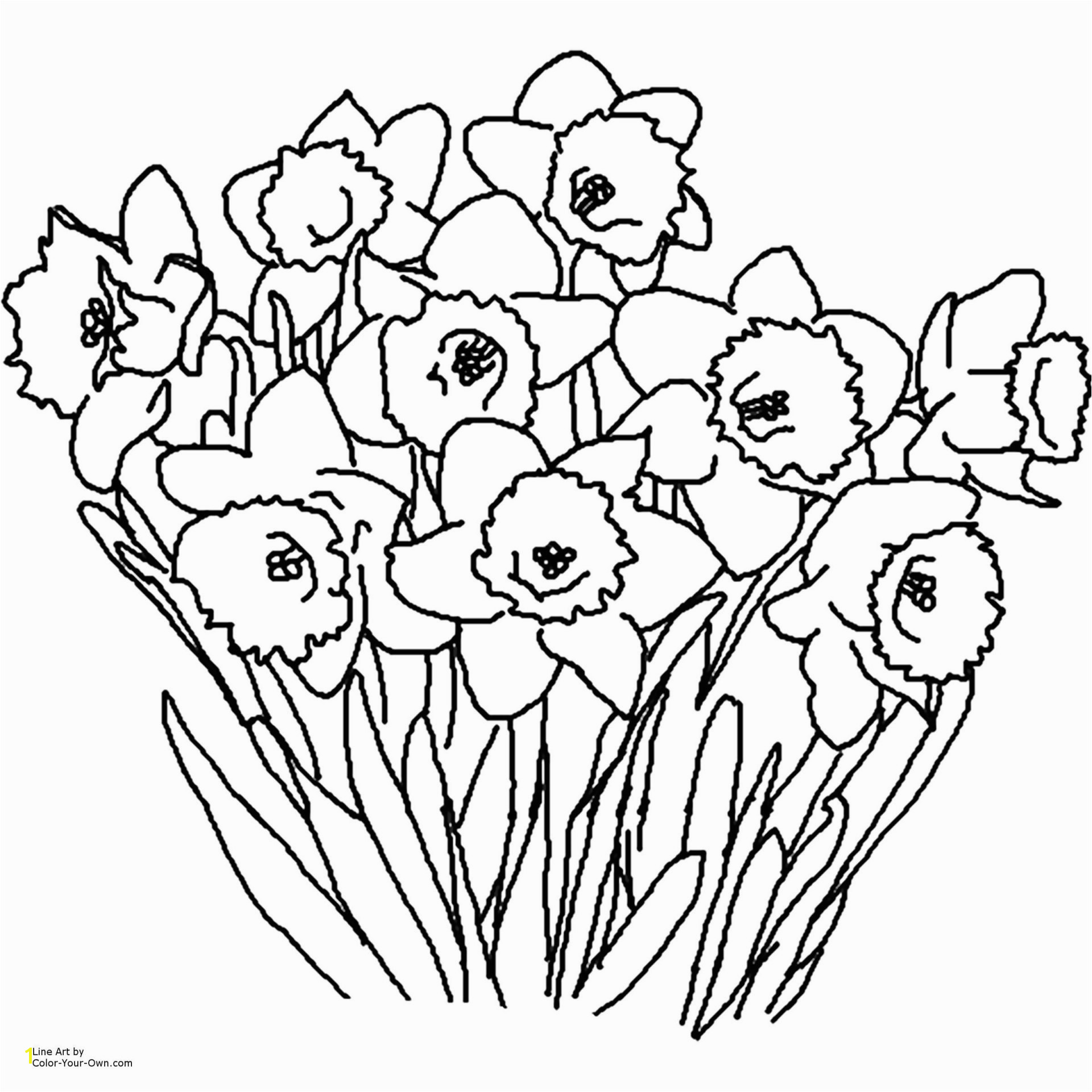 Free Printable Flower Coloring Pages Best Free Printable Spring Flowers Coloring Pages Coloring Home