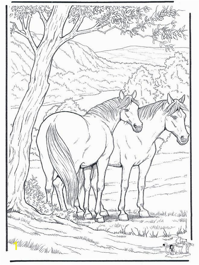 Free Horse Coloring Pages Fresh Free Coloring Pages A Horse for Kids for Adults In Free