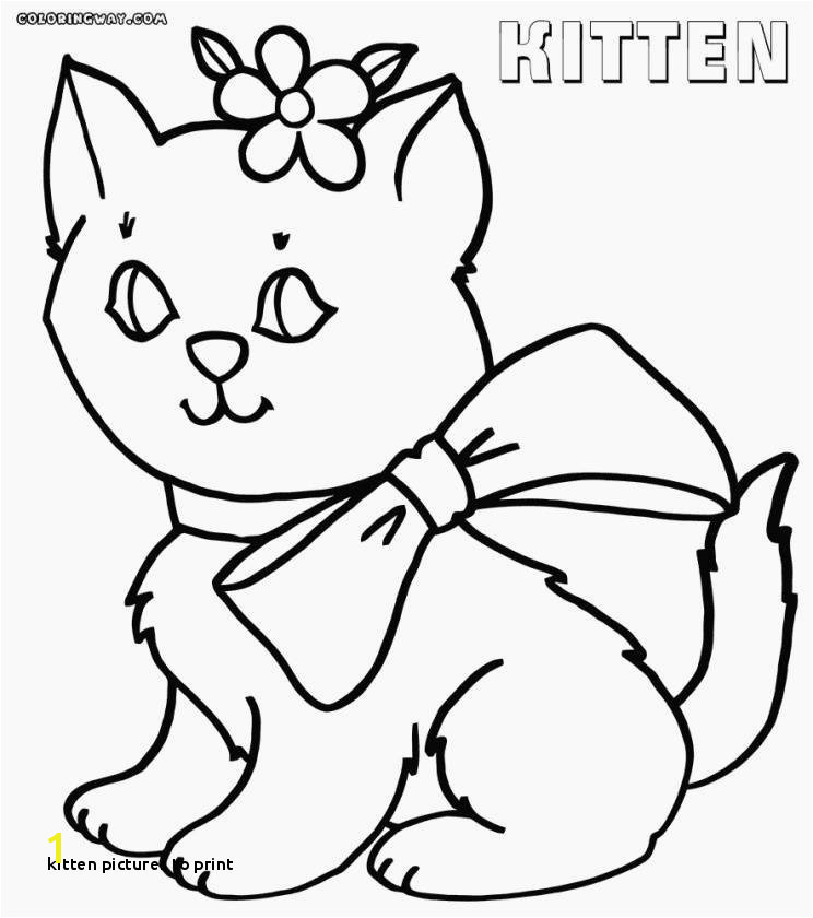 Free Printable Kitty Cat Coloring Pages 24 Kitten to Print