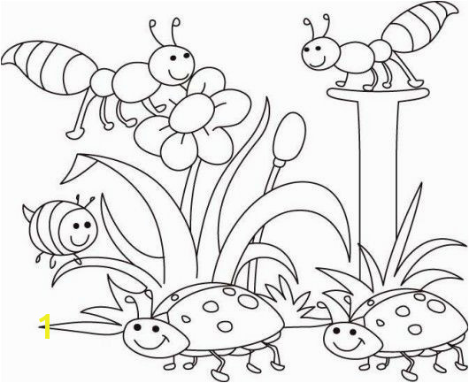 Spring Bugs Coloring Pages