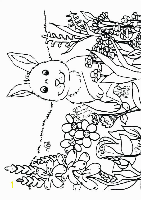 weather coloring pages pdf spring coloring pages free printable spring coloring sheets spring coloring pages spring
