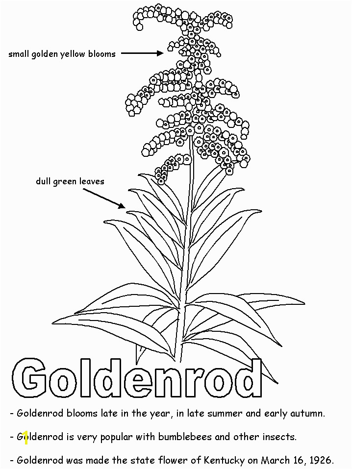 Goldenrod Coloring Page Kentucky State University Ksu is A Public Institution that Was