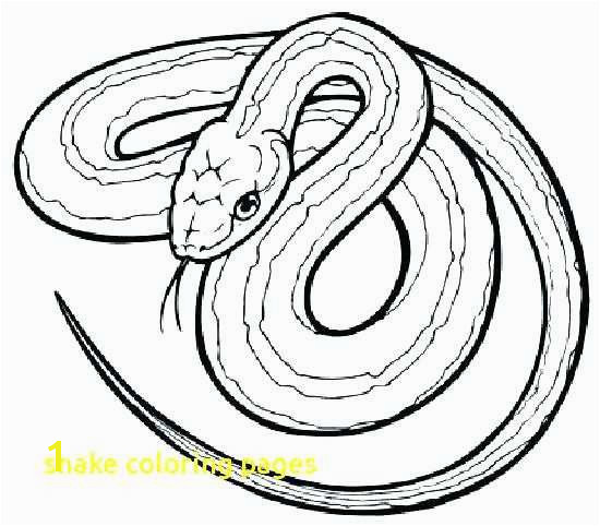Rattlesnake Coloring Page Elegant Red Tail Boa Coloring Coloring Python Snake Reptiles Coloring