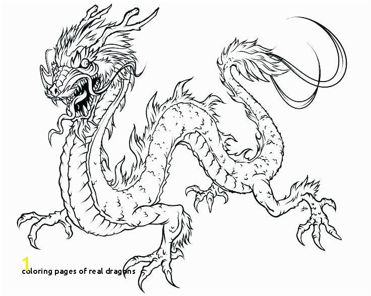 Coloring Pages Real Dragons Fairies Fantasy Coloring Pages Book Puff the Magic Dragon Colouring