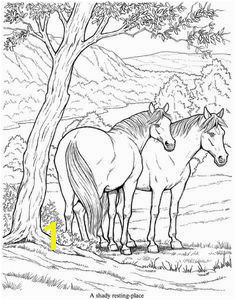 Wild Horse Coloring Pages i§in resim sonucu