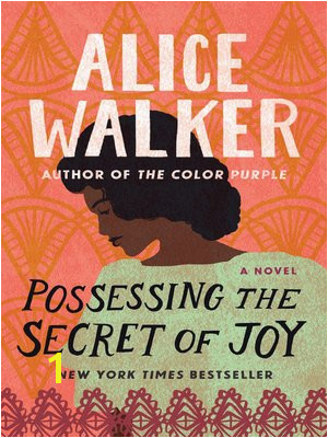cover image of Possessing the Secret of Joy