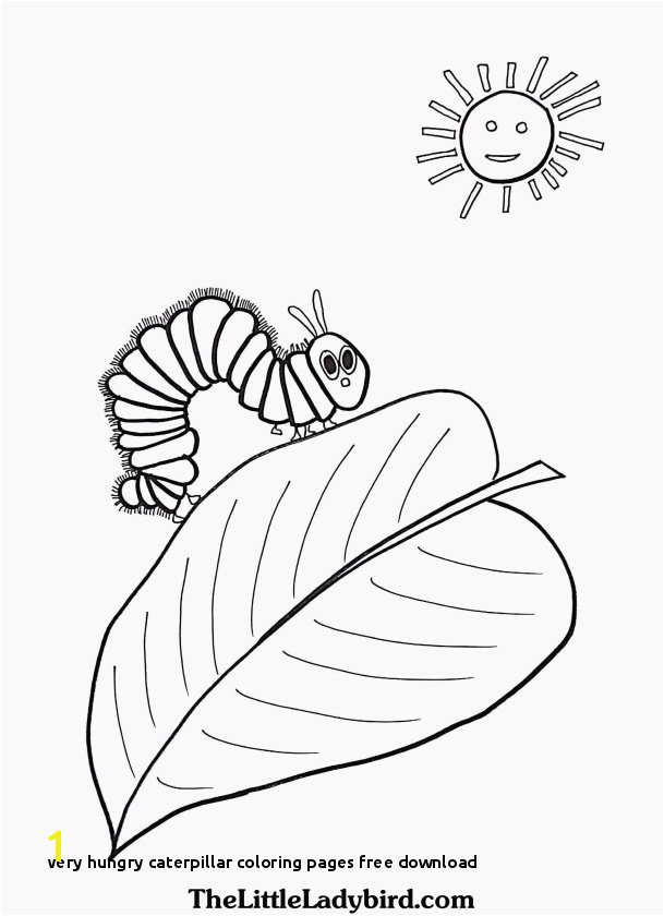 Beautiful Very Hungry Caterpillar Coloring Pages Free Download