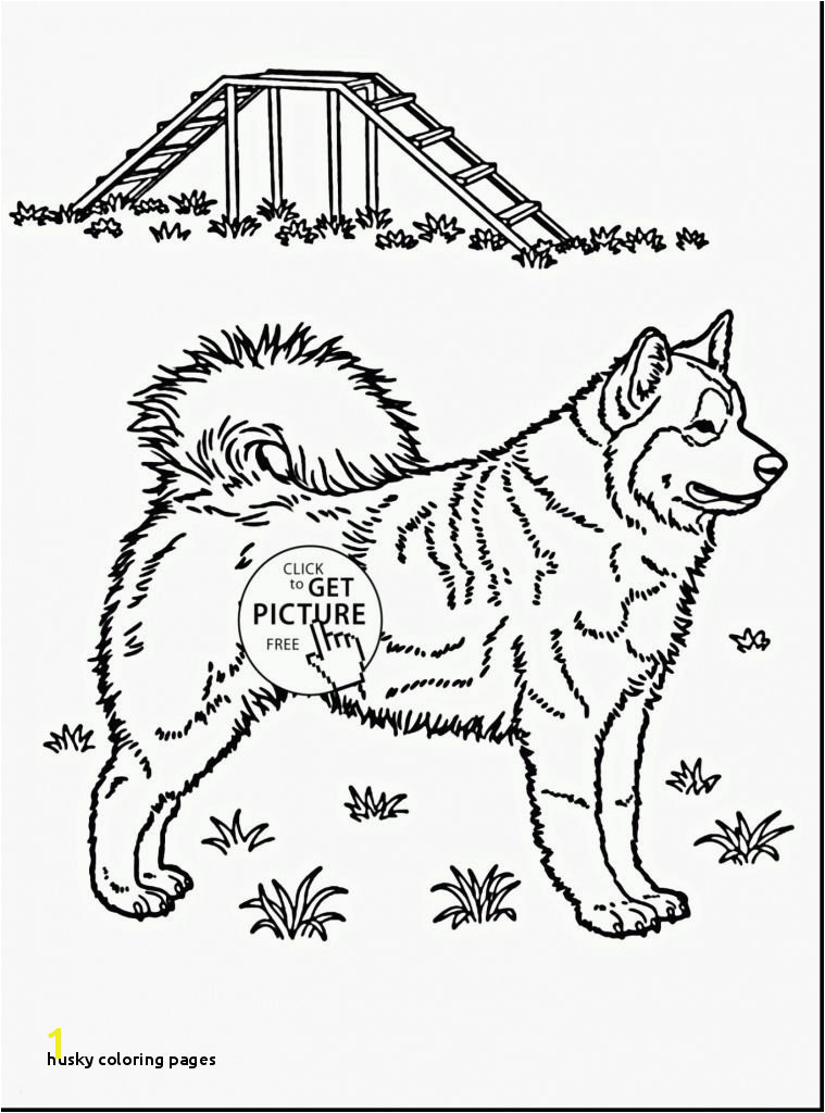 Coloring Dog Best Husky Coloring Pages Verikira FLy Coloring Page