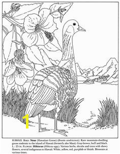 Nene and Hibiscus Hawaii State Bird and Flower coloring page from Gooses category Select from printable crafts of cartoons nature animals