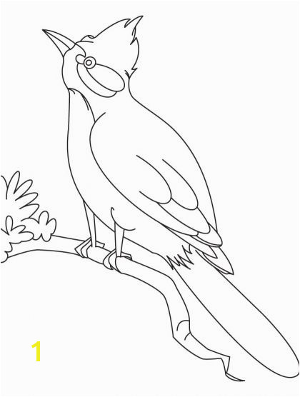 A nightingale bird watching coloring page Download Free A nightingale bird watching coloring page for kids