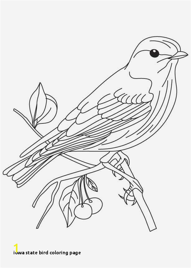 Iowa State Bird Coloring Page 20 Beautiful Animal Coloring Pages Birds Bluebird