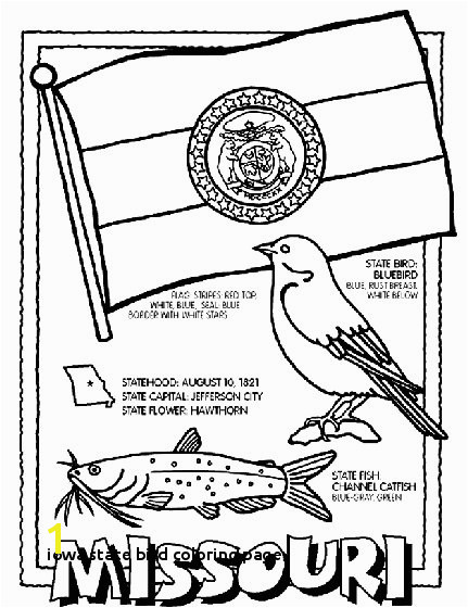 Gallery Iowa State Bird Coloring Page State Birds Gallery