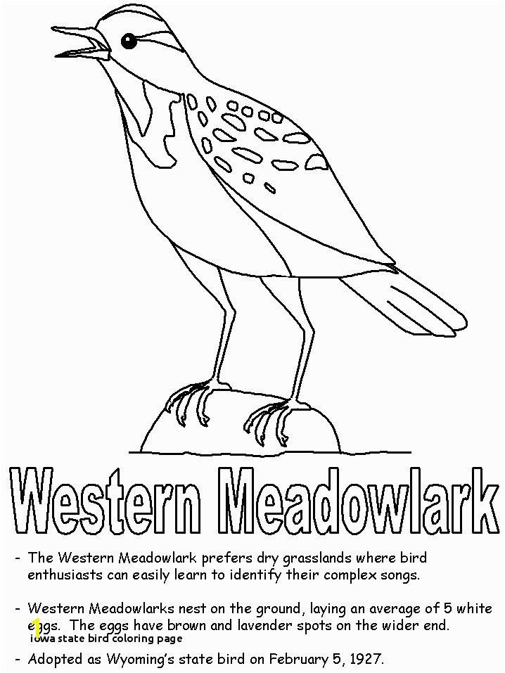 Iowa State Bird Coloring Page Iowa State Bird Coloring Page State Birds Gallery Kids Coloring