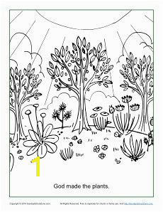God Made the Plants Coloring Page Creation Bible