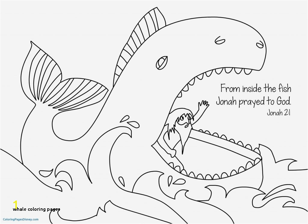 Whale Coloring Pages for Kids Whale Coloring Pages Columbus Designer