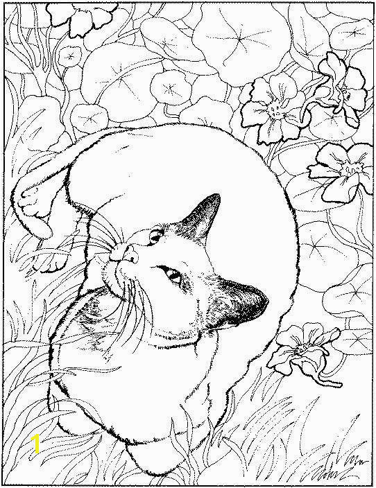 january coloring pages posted at january 5 2012 animal coloring pictures coloring pictures Coloring pages for all ages 2 Pinterest