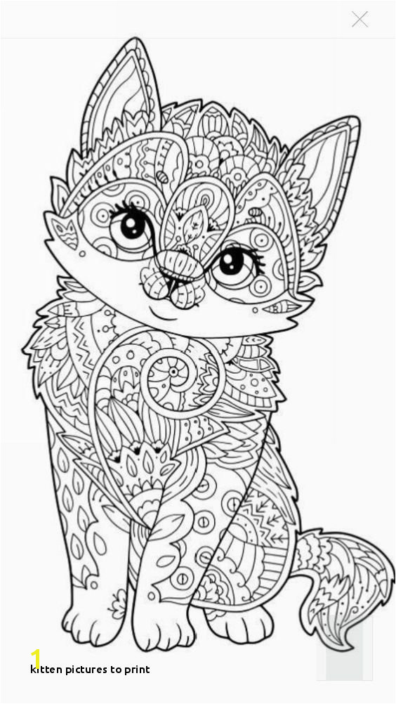 Kitty Cat Coloring Pages for Adults Kitten to Print Cat Coloring Pages Free Printable Awesome