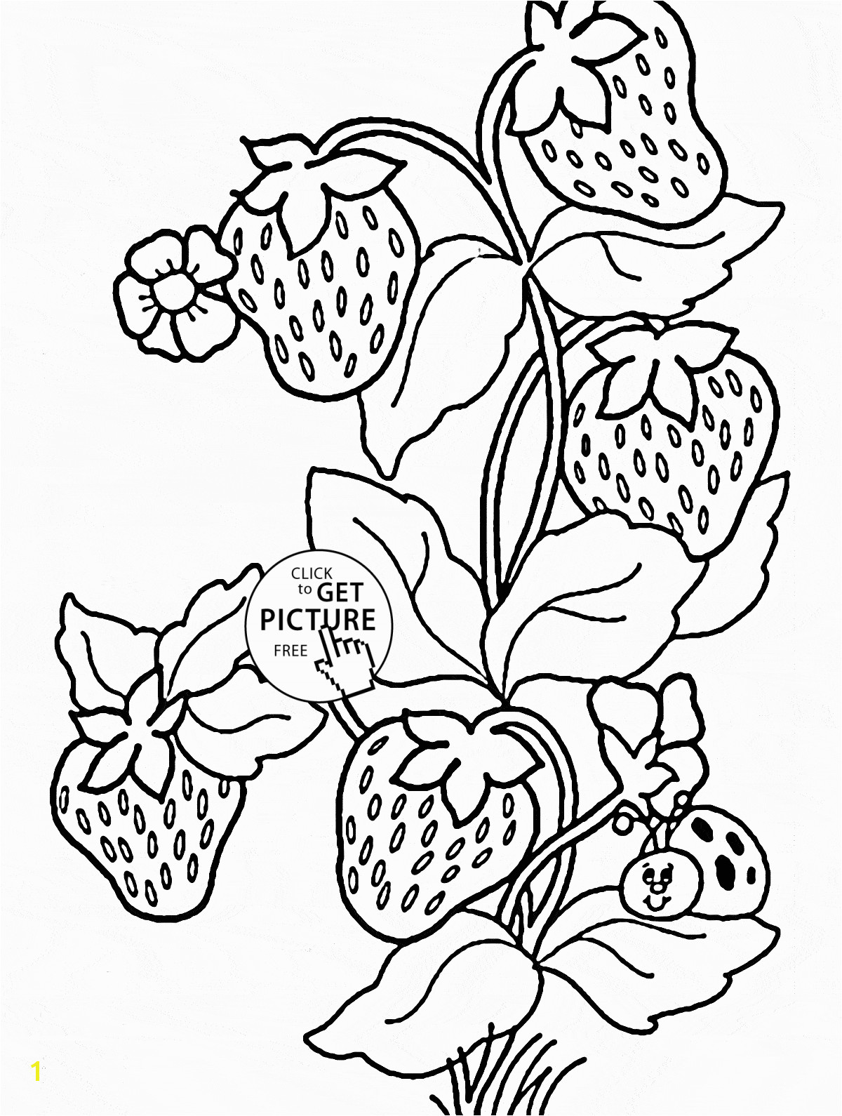 Ladybug And Strawberries coloring page for kids fruits coloring pages printables free Wuppsy
