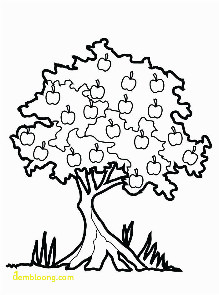 Apple Printable Coloring Pages Unique Fall Tree Coloring Pages Printable Autumn Tree Coloring Page Free